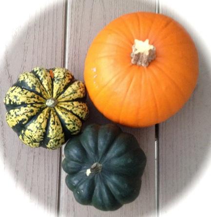 Squash and sugar pumpkin from my CSA farm.