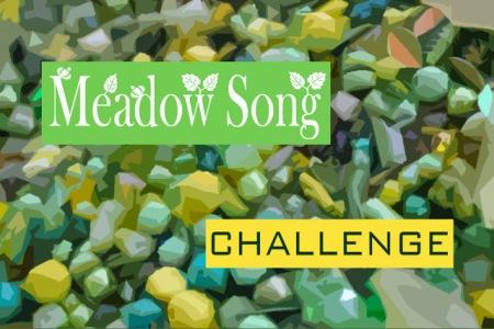 meadowsongchallenge